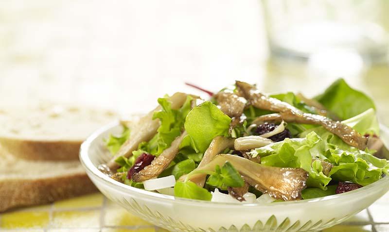 Salade tiède aux pleurotes
